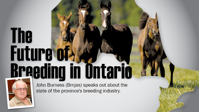 Thumbnail for The Future of Breeding in Ontario