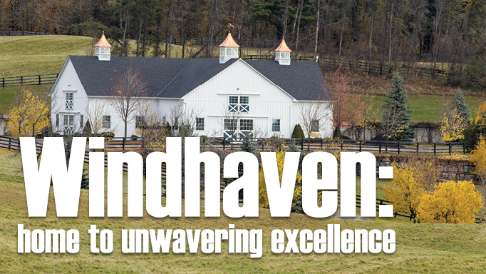 Thumbnail for Windhaven: Unwavering Excellence
