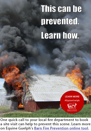 Thumbnail for How to Prevent Future Panic with a Fire Safety Site Visit