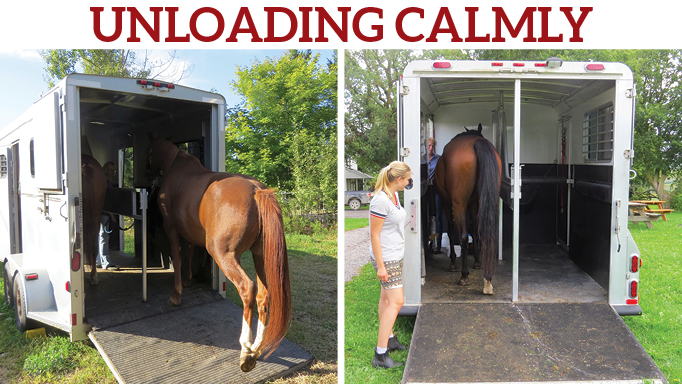 Thumbnail for Train Your Horse to Back-off a Trailer Calmly