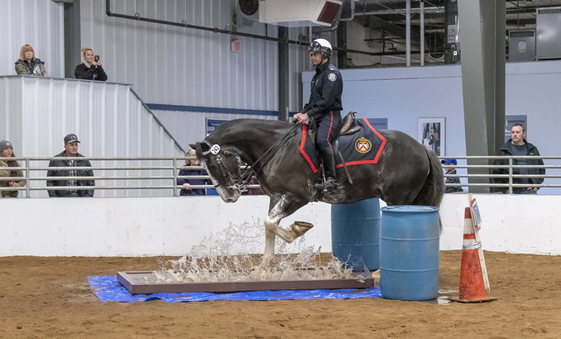Toronto Police Service mounted officer Jeff Dale took first place in the obstacle course at the 2018 North American Police Equestrian Championships. Photo by Joann K. Long/Gentle Dove Farm