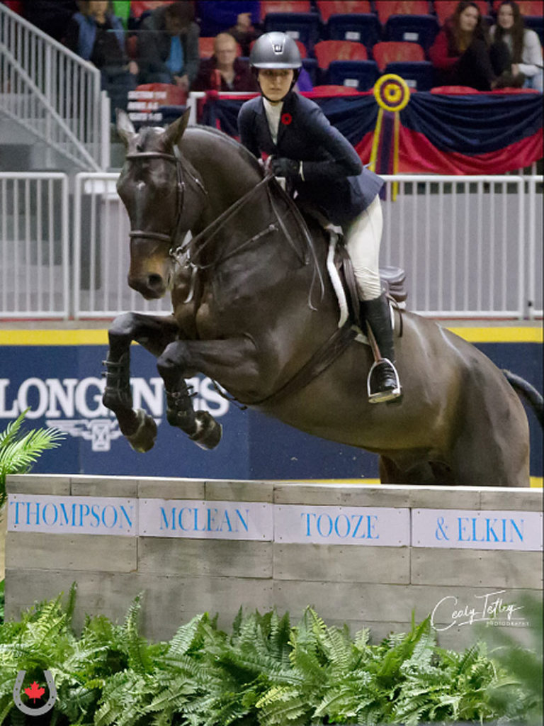 Miranda Burruano, 18, from Orchard Park, NY won the 2018 Jump Canada Medal National Final aboard Quioxte on Nov. 6, 2018 at the Royal Horse Show in Toronto, ON.Photo by © Cealy Tetley - www.tetleyphoto.com