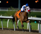 My Silencer and jockey Luis Contreras winning the Frost King Stakes on October 31 at Woodbine Racetrack. Michael Burns Photo