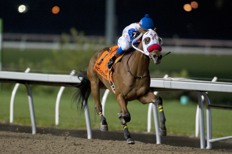 My Silencer and jockey Luis Contreras winning the $100,000 Frost King Stakes on Wednesday, Oct. 31 at Woodbine Racetrack.