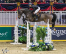 Nicole Walker, riding Falco van Spieveld, won the $25,000 Canadian Show Jumping Championship – Phase One, presented by Lothlorien, on Friday, November 2, at the Royal Horse Show in Toronto, ON.