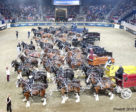 An arena full of draft horses is one of the most impressive sights at the Royal. Photo ©2018 by Lawrence J. Nagy