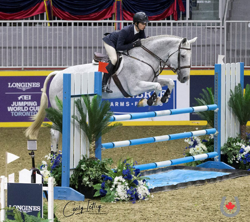 After making history as the fourth Canadian to win the prestigious ASPCA Maclay National Championship on Nov. 4 in Kentucky, Sam Walker returned to Canada to claim the 2018 Running Fox CET Medal National Final just four days later aboard Willem. Photo © Cealy Tetley - www.tetleyphoto.com