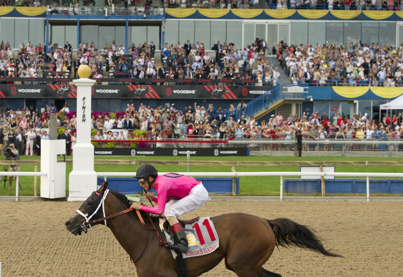 2018 Queen's Plate champion Wonder Gadot captivated the crowd at Woodbine with her winning performance in rein to jockey John Velazquez.