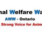 A new animal rights group, called Ontario called Animal Welfare Watch, launched December 17, 2018