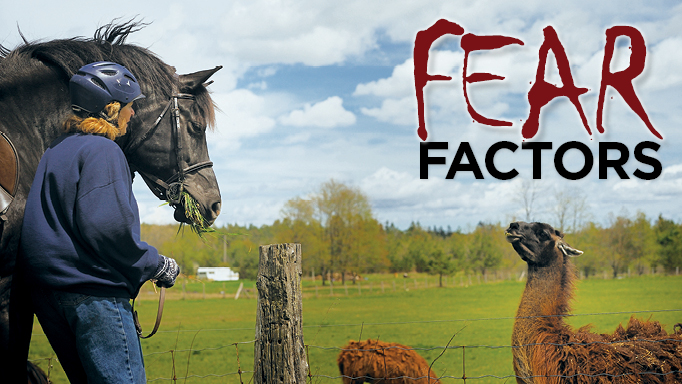 Thumbnail for Fear Factors: Why Horses Spook