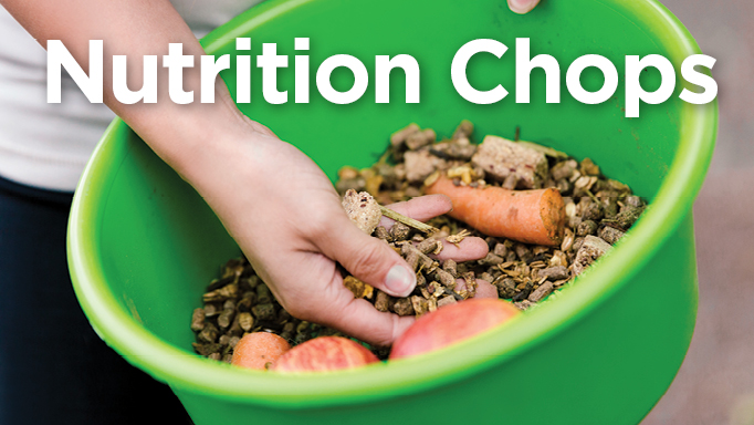 Thumbnail for Nutrition Chops