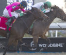 Artilena and jockey Emma-Jayne Wilson winning the $125,000 Ontario Lassie Stakes on Sunday, Dec. 9 at Woodbine Racetrack.