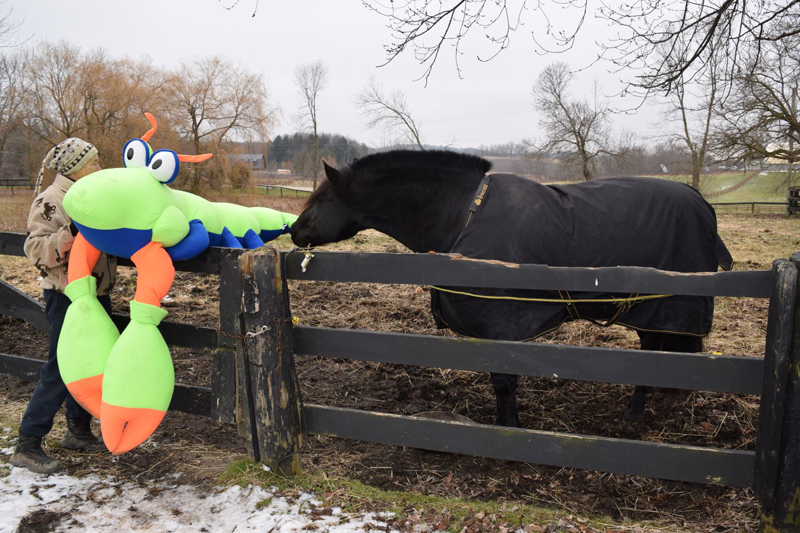 Pax greets a wacky new visitor.