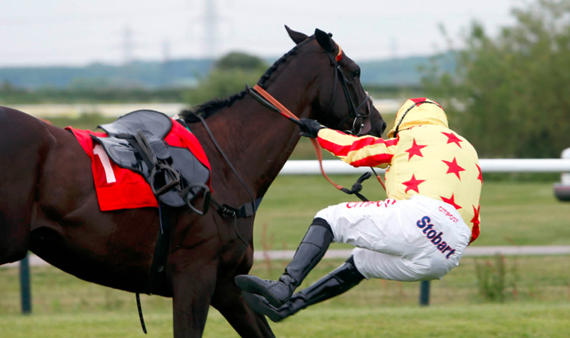 Thumbnail for Archival Horse Race Footage to Help Improve Rider Safety