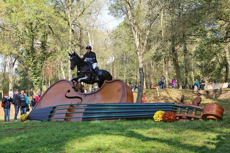 Phillip Dutton has announced that California d'Horset has joined his string of horses. Photo Phillip Dutton Eventing