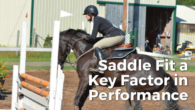 Thumbnail for Saddle Fit a Key Factor in Performance