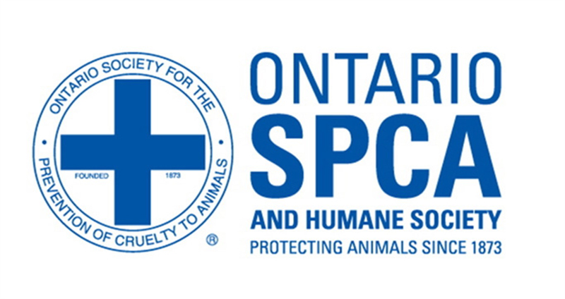 Thumbnail for Court Rules it is Unconstitutional for OSPCA to Enforce Animal Welfare Laws