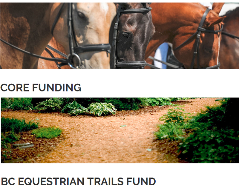 Thumbnail for Funding Available for Equestrian Events & Projects in B.C.