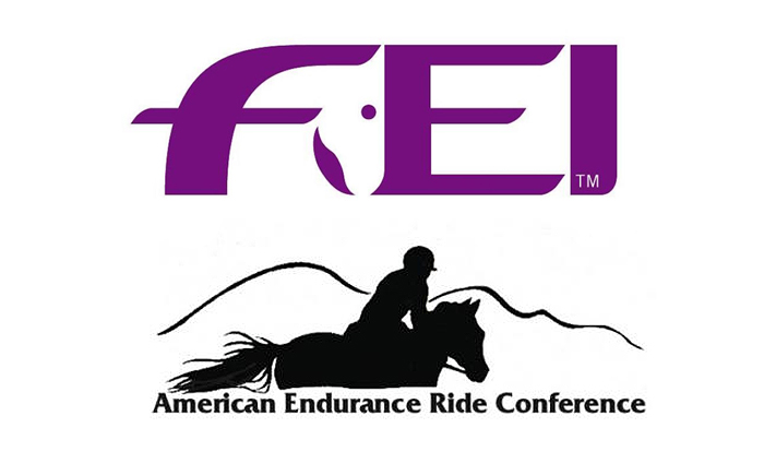 Following news that the American Endurance Ride Conference and US Equestrian Federation have parted ways, U.S. endurance riders have been left in limbo.