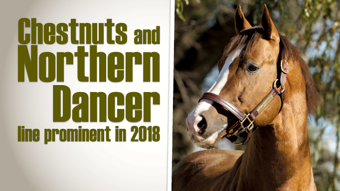 Thumbnail for Chestnuts and Northern Dancer Line Prominent in 2018