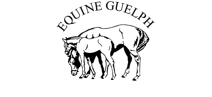 Thumbnail for Two Students Win Equine Guelph Online Tuition Awards