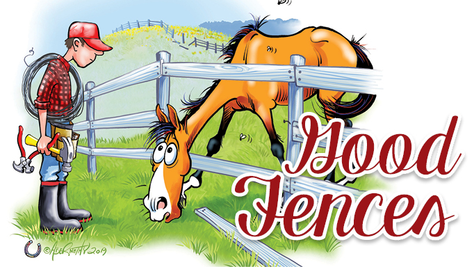 Thumbnail for When it Comes to Horses, Good Fences Make Good Neighbours