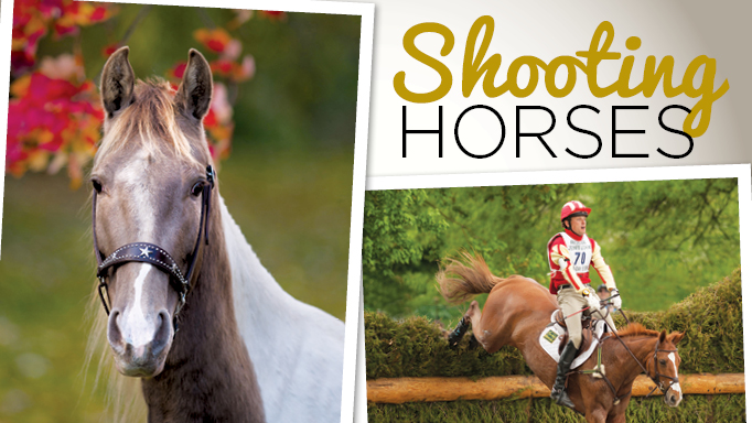 Thumbnail for Tips and Tricks for Photographing Horses