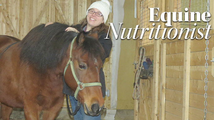 Thumbnail for So You Want to be an Equine Nutritionist?