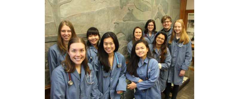 Thumbnail for Ontario Veterinary College Earns Top 10 in World University Rankings