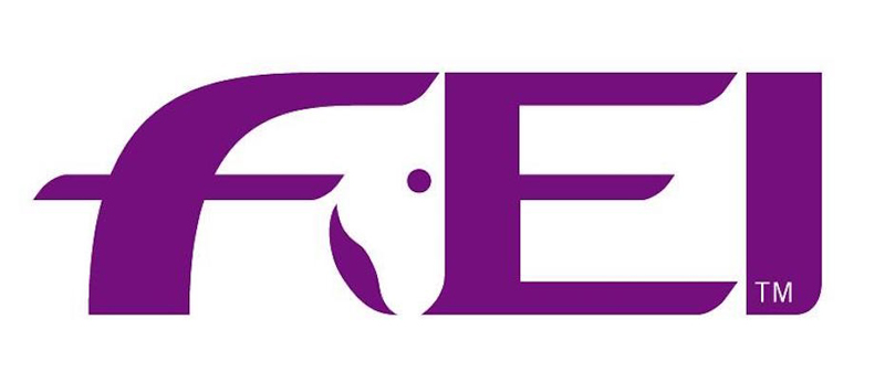 The Endurance Temporary Committee met with reps from each of the FEI Regional Groups, World Horse Welfare and the Alliance of Endurance Organisers.