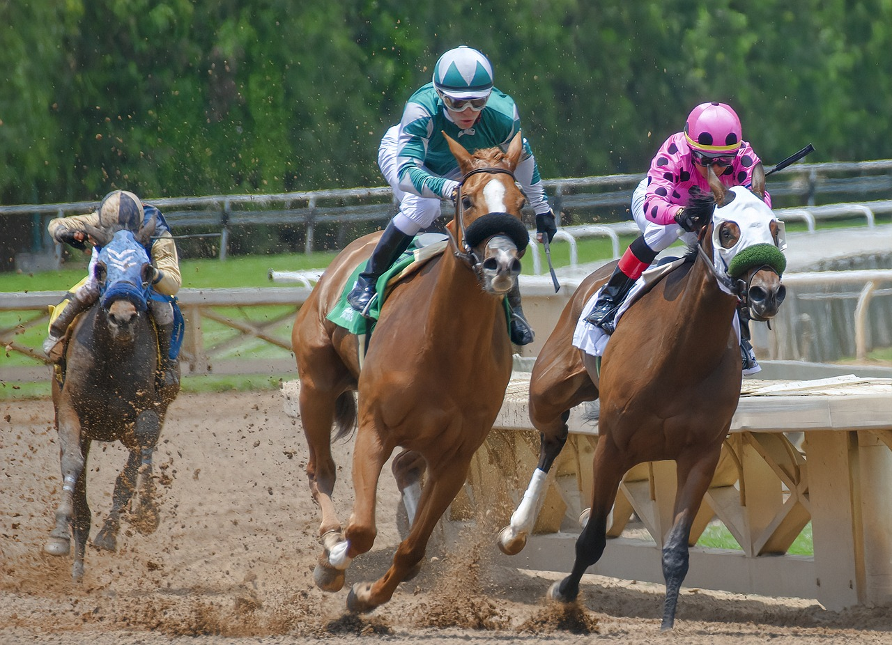 Thumbnail for Equine Guelph Offers Free Online Courses for Ontario Racing Industry