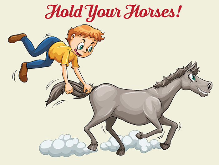 Thumbnail for Horse Idioms in Our Language…There's Quite a List!