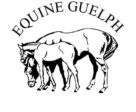 Equine Guelph is hosting a new online short course where you can learn from experts how to reduce the chance of digestive tract issues in your racehorse.
