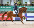 Lee Garrod won the FEI Para Individual Champ Test Grade V – CPEDI 3* aboard Question.