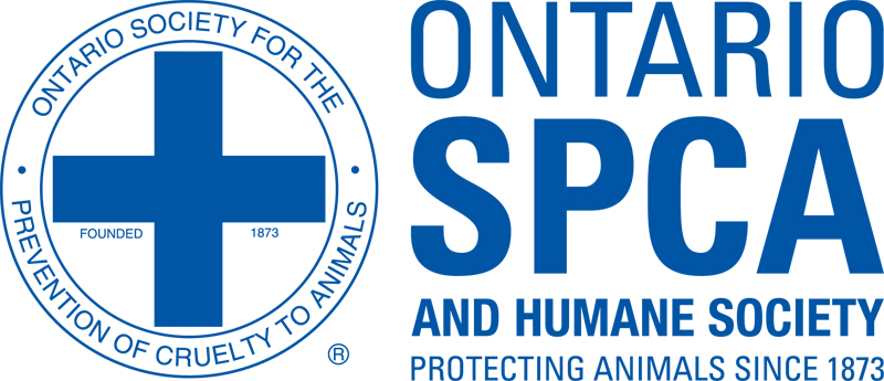 Thumbnail for The OSPCA Will No Longer Enforce Animal Cruelty Laws