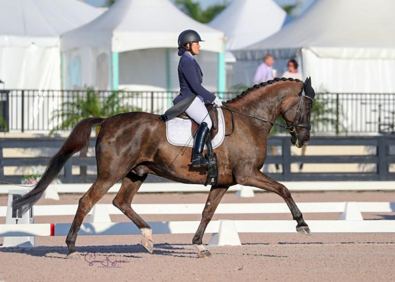 Natalie Pai and Fritz San Tino won the Junior/Young Rider section of the FEI Intermediate I* at the AGDF. Photo ©SusanStickle.com