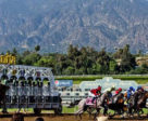 Veteran Trackman Dennis Moore has been contracted to evaluate the track surface at Santa Anita Park, which has been closed until further notice.