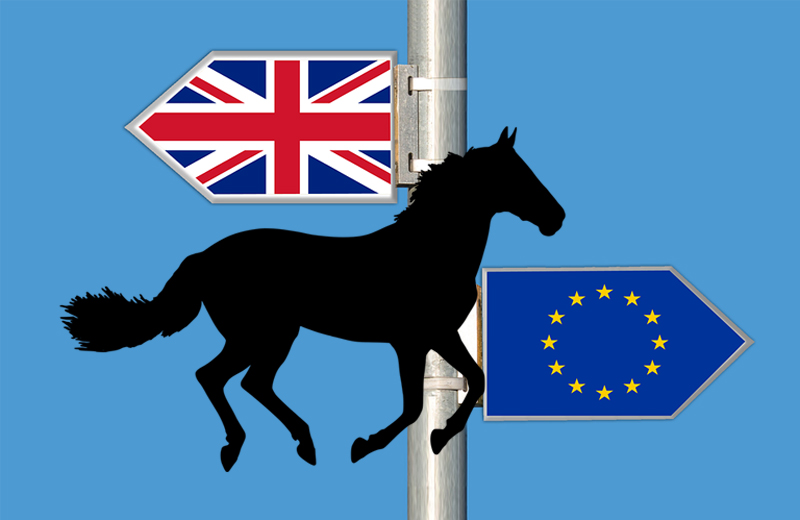What does Brexit mean for the horse industry?