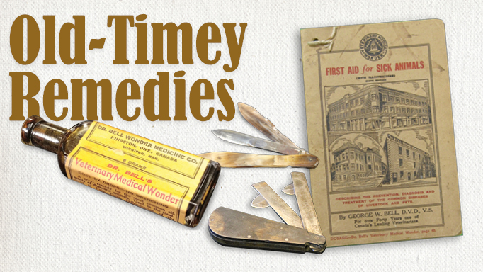 Thumbnail for Quack Cures from the Equine Veterinary Past