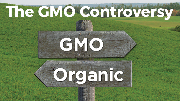Thumbnail for Are GMO (Genetically Modified) Feeds Safe for Horses?