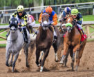 A new race-day medication ban for Ontario racehorses has some veterinarians concerned about unintended consequences, that may compromise horse health.