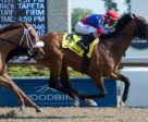 Are You Kidding Me winning the 2018 Eclipse Stakes at Woodbine. Michael Burns Photo