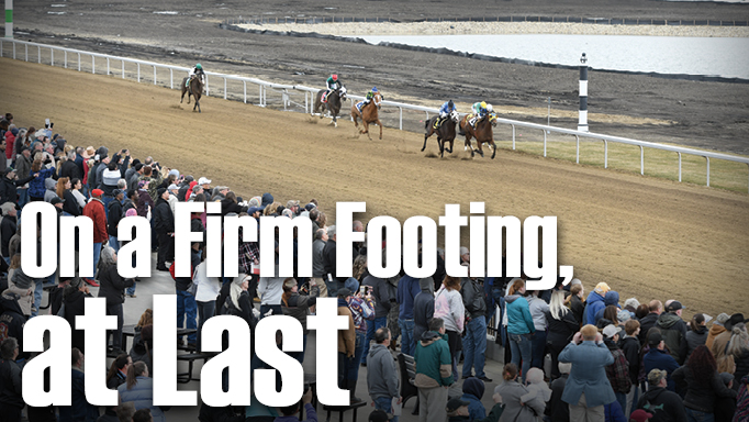 Thumbnail for Century Mile Brings Stability to Alberta Horse Racing Scene