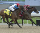Federal Law and jockey Gary Boulanger winning the $125,000 Queenston Stakes over fellow Mark Casse trainee My Silencer on Sunday, May 19 at Woodbine Racetrack.