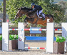 John Pearce and Firestone S won the $40,000 MediVet Equine National Grand Prix at the Temecula Valley National Horse Show.