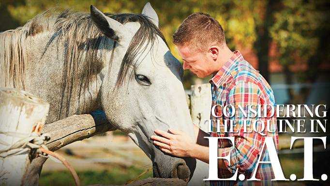 Thumbnail for How Do Horses Feel About Participating in Therapy?