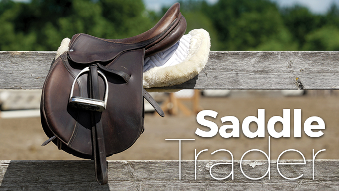 Thumbnail for How to Shop Smart When Buying Used Saddles