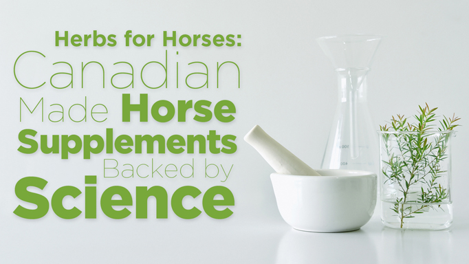 Thumbnail for Herbs for Horses Products are Backed by Science