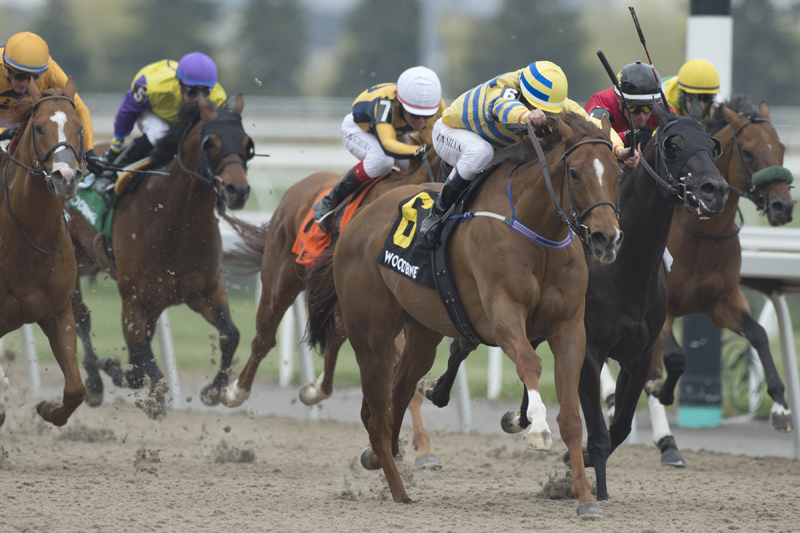 Pink Lloyd and jockey Eurico Rosa Da Silva winning the Grade 3 Jacques Cartier Stakes on Saturday afternoon at Woodbine Racetrack.