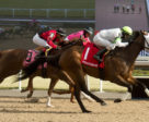Souper Success and Jesse Campbell winning the Woodstock Stakes on April 27 at Woodbine Racetrack. Michael Burns Photo